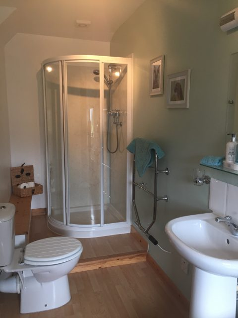 Ensuite bathroom with large shower